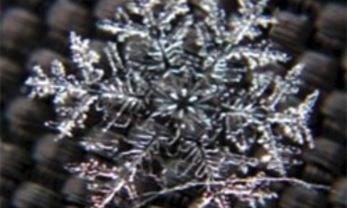 kristalliseren